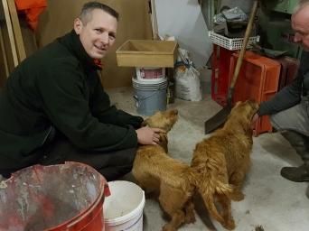 Markus und Daniel mit den Hunden