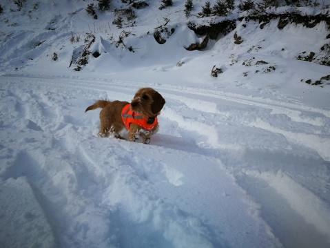 Claire im Schnee