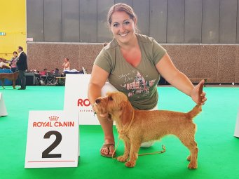 Benelux Winner 9.8.2018 V - Speciality 10.8.2018 - V2 - World Dog Show - sg