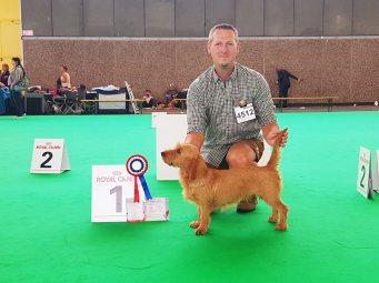 Benelux Winner 9.8.2018 V - Speciality 10.8.2018 V - WDS 11.8.2018 sg