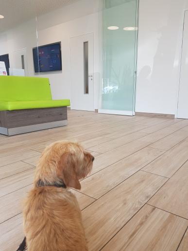 Warten beim Arzt ...